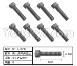 HG P801 P802 Parts-165-13 8012-P008 Inner-Hexagon Cup Head TB screws(8pcs)-Φ2.5X12mm