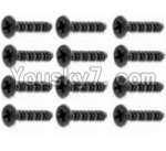 HaiBoXing 12813 Parts-48 S201 Round Head Self Tapping Screws-2.6X25mm(12PCS)
