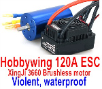 DHK Hunter Parts-Hobbywing 120A ESC and XinjI 3660 Brushless motor(Violent, waterproof)