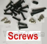 Wltoys V950 Spare-Parts-09 Screws set